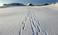 Noordwijkse GC in de sneeuw. Hole 1