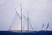 Elena of London sailing in the 2011 St. Barth's Bucket Regatta, race 1.