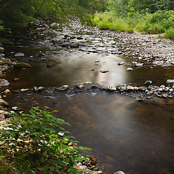 The Mill River in the new Mill River Greenway in Northampton, Massachusetts.