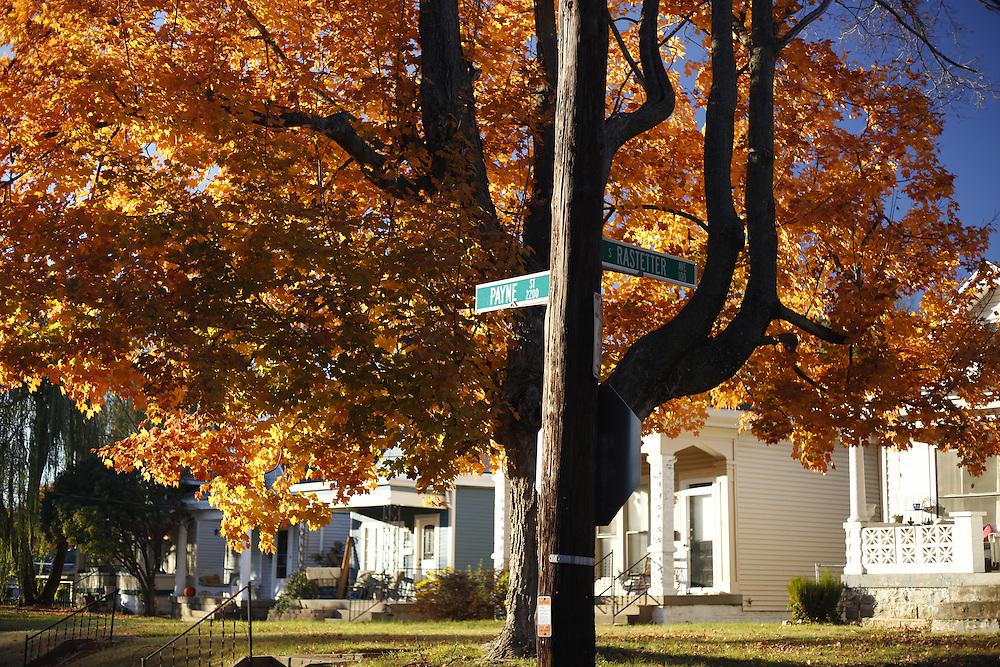 Payne Street, Sunday, Nov. 20, 2016 at House of Payne in Louisville.