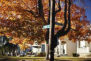 20161120_payneStreet