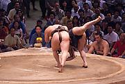Yokuzuna ranked Mongolian Hakuho (Mönkhbatyn Davaajargal; left), and Ozeki ranked fellow-Mongolian Harumafuji (Davaanyamyn Byambadorj, right) losing in a bout in the controversial Nagoya summer Grand Sumo Tournament held on the 14th and second final day.