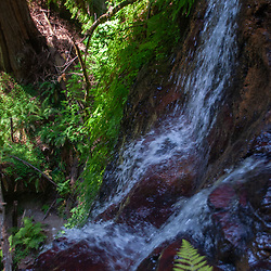 Berry Creek Falls, Big Basin Redwoods State Park, California