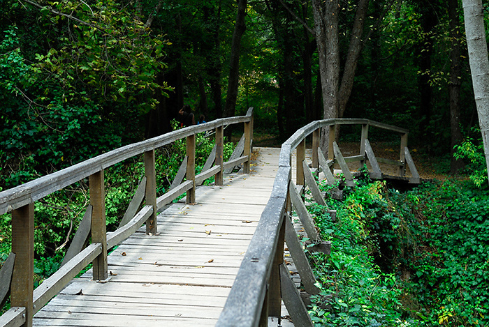 Walkway and bridge, Krka National Park, Croatia