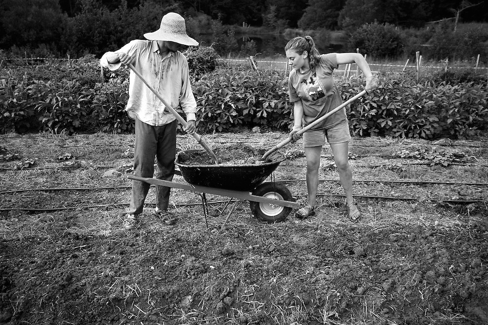 "STORY SUMMARY:  Although the average age of a farmer in the US is 57, a new group of ""Young farmers"" in their 20's and 30's are foregoing urban lifestyles to work together in radical living and farming collectives. This sustainable farming community is especially growing in the piedmont of North Carolina. Through hard work, this evolving community seeks to break free from mechanization and consumerism, becoming a self-sustaining system. THIS IMAGE: Brandon Hines and Sun Butler make planting beds at a ""Crop Mob"" - an activity in which people from different farms get together to complete a major project at one location. The experience builds community and helps out fellow farmers with a great deal of work, while also encouraging conversation, working together and the sharing of knowledge."