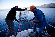 Justin Pulliam, left, and Fred Jackson, right, pull in a string of crayfish traps in Lake Tahoe near Incline Village, Nevada, July 8, 2012. The Jacksons are the first to commercially harvest crayfish in Lake Tahoe.