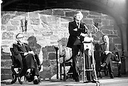 Opening National Film Studio of Ireland - Ardmore. Special for Frankie Byrne.<br /> 1975.<br /> 20.11.1975.<br /> 11.20.1975.<br /> 20th November 1975.