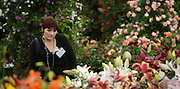 © Licensed to London News Pictures. 21/05/2012. Chelsea, UK. A woman looks at a display. Press preview of The Chelsea Flower Show today 21 May 2012. The world's most famous flower show, which has been held in the grounds of the Royal Chelsea Hospital since 1913, will be open to the public from Tuesday. Visitors are expected to flock in their thousands to see displays of plants, flowers and furniture for ideas on how to decorate their gardens.. Photo credit : Stephen Simpson/LNP