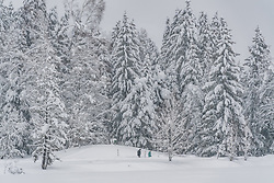 THEMENBILD - Zwei Personen bei einer Winterwanderung rund um den Schwarzsee, aufgenommen am 10. Jänner 2019, Kitzbuehel, Oesterreich // Two people on a winter hike around the Schwarzsee at Kitzbuehel, Austria on 2019/01/10. EXPA Pictures © 2019, PhotoCredit: EXPA/ Stefan Adelsberger