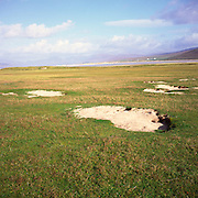 Machair grassland, Isle of Harris, Western Isles, Outer Hebrides, Scotland
