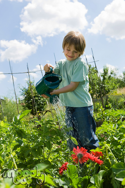 Boy watering flowers in garden