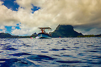 Swimming with stingrays and reef sharks off the island of Bora Bora, Society Islands, French Polynesia.