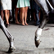 ELMONT, N.Y. - JUNE 6, 2015: Racegoers' feet are seen beyond a horse's hoofs prior to the 147th running of the Belmont Stakes at Belmont Park. CREDIT: Sam Hodgson for The New York Times