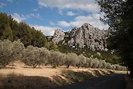 France. Bouches du Rhone.Les Baux de Provence    France    / Les baux de provence dans les alpilles    France  / /