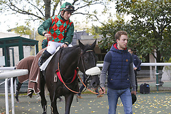 October 27, 2017 - Auteuil, France, France - Course 5 - Pichelot - Kevin Nabet (Credit Image: © Panoramic via ZUMA Press)