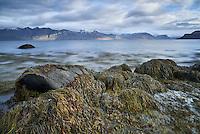 Seascape in Arnarfjörður, mount Bauluhúsashyrna in background left. West fiords of Iceland.