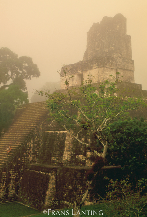 Mayan temple in mist, Tikal National Park, Guatemala