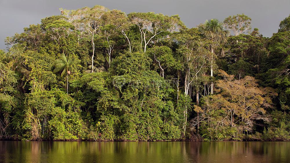 Lake Garzacocha and it magnificent rainforest at LaSelva Lodge, Ecuador.