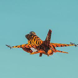 Tigermeet 2016