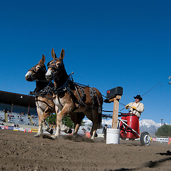 Mule Days 2010 - Best Of
