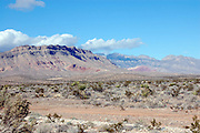 This is a photograph of a desert taken outside of Las Vegas, Nevada.