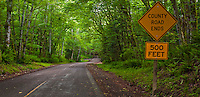 """A rural country Kitsap County road with a """"County Road Ends"""" sign in a Big Leaf Maple and Red Alder deciduous forest on the Kitsap Peninsula in Puget Sound, Washington state, USA."""