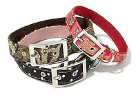 three fab dog collars