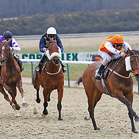 Lingfield 6th April 2013
