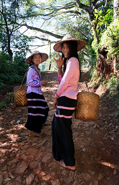 Tea farmers in the northern Shan state, Myanmar.