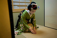 Miehina, a 20 year old maiko ( an apprentice geisha) from the Miyagawacho district of Kyoto, bows at the end of performing a dance for her evening clients,  in the tea house where she lives and works, Kyoto, Japan, Sunday, May 18th 2008.