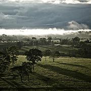 Brume pâturages et forêt | Neblinha, pastagens e Floresta