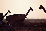 Rice: rice harvesting equipment in the field. Butte County, California, USA.