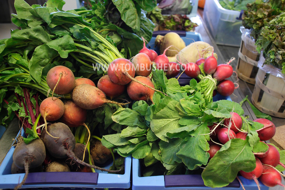 New Hampton, New York - Fresh vegetables on display in the store during the celebration of 100 years in business at Soons Orchards and Farm Market on Oct. 11, 2010. ©Tom Bushey / The Image Works