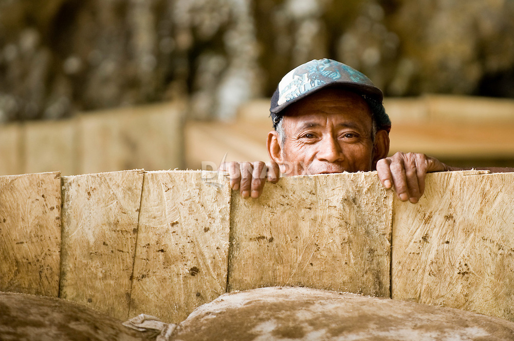 A Maanggarai worker appears from the depths of an excavation pit at Liang Bua cave.