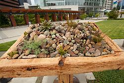 North America, United States, Washington, Bellevue, outdoor sculpture