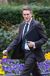 Downing Street, London, March 14th 2017. Chief Whip (Parliamentary Secretary to the Treasury) Gavin Williamson arrives at Downing Street, London, for the weekly meeting of the UK cabinet, following yesterday's vote in Parliament to allow Prime Minister Theresa May to go ahead with triggering Article 50 beginning the Brexit process of withdrawing from the European Union.