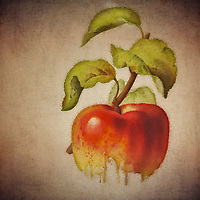 What is the old saying about an apple a day? This beautiful image by Jan Keteleer shows a simple visual, yet takes that simple visual into some truly fascinating territory. This is an image that has the ability to captivate you with its unique touches. There is something very arresting about this fine art piece.<br />