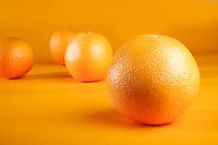 Studio shot of oranges on orange background
