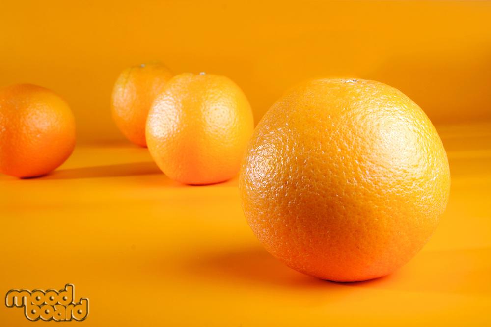 Studio shot of oranges on orange background