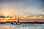 Tall ship on Sydney Harbour