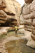 Israel, West Bank, Wadi Qelt, is a stream running west to east across the Judean desert