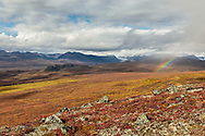 The Maclaren River Valley is adorned by a rainbow and autumn colors in Interior Alaska. Afternoon.