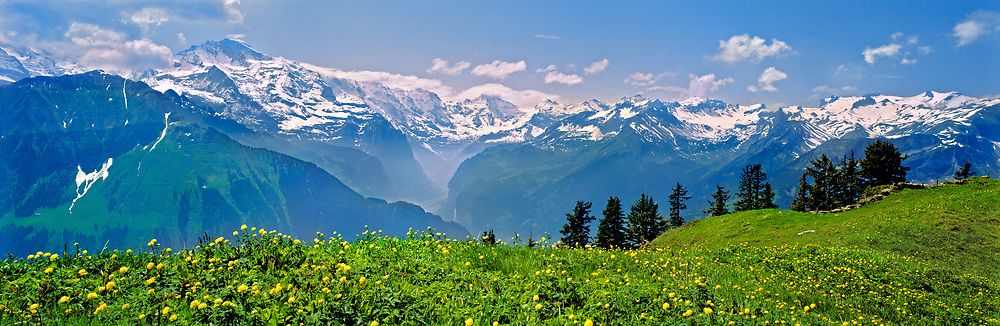 The Schniggeplatte offers a fine view of the Alps in the Berner Oberland, Switzerland.
