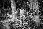 NOUVELLE CALEDONIE, HIENGHENE, Tiendanite - Aout 2013  - Coutume Kanak -Portrait de Jean-Paul COUHIA - Preparation du four traditionnel Kanak pour la cuisson du bougna - La veille, le four est préparé. les rondins de bois sont places sur un lit de pierre, sur un volume important. Des pierres sont egalement placees dans les espaces. Le feu est allumé dans la nuit.