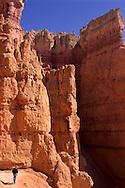 Hiking between Hoodoos within Bryce Canyon, Bryce Canyon National Park, UTAH