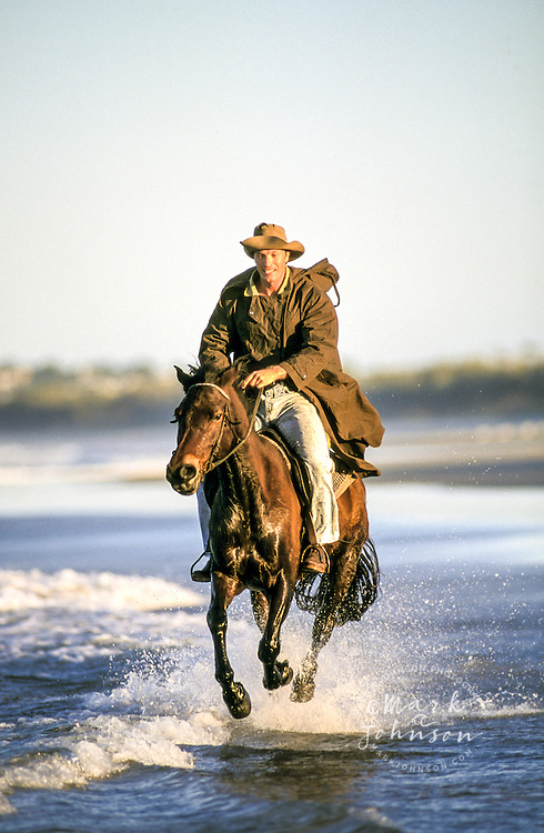 Man galloping a horse on the beach, Noosa, Qld., Australia