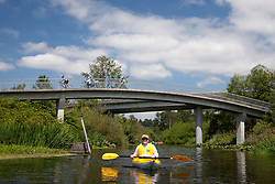 North America, United States, Washington, Bellevue, teenage man kayaking under highway bridge in Mercer Slough Nature Park.