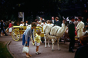 A young woman holds the hand of her 5 year-old brother during a visit to London zoo in the early 1960s. Looking closely at a tame llama that has been hitched up to a harness and about to pull children for a short ride around the enclosures of London's zoo in Regents Park. It was recorded on a film camera by the boy's father, an amateur photographer in 1964.The picture shows us a memory of nostalgia in an era from the last century.