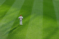 Ben Revere #2 of the Philadelphia Phillies looks on from center field during a game against the Minnesota Twins on June 11, 2013 at Target Field in Minneapolis, Minnesota.  The Twins defeated the Phillies 3 to 2.  Photo: Ben Krause