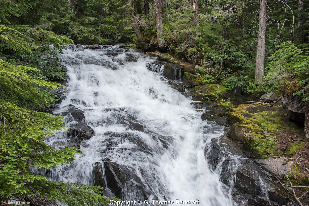 Water tumbles 34 feet down a gradual cascade at Madcap Falls on Paradise River at Mt Rainier National Park.